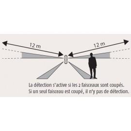 Détecteur de mouvement façade - Protection périmétrique - 1875108 - Somfy