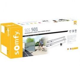 SGS 501 - Motorisation à vis pour portail battant - Somfy - 2400781