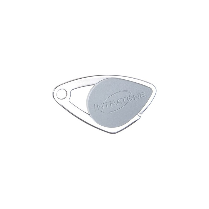 Badge électronique Mifare inox Gris - Intratone - 08-0102
